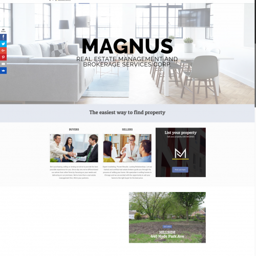 Magnus REMBS Website design